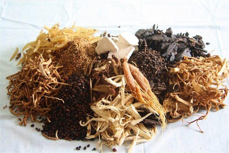 Bài thuốc Đông y sử dụng các thảo dược thiên nhiên lành tính