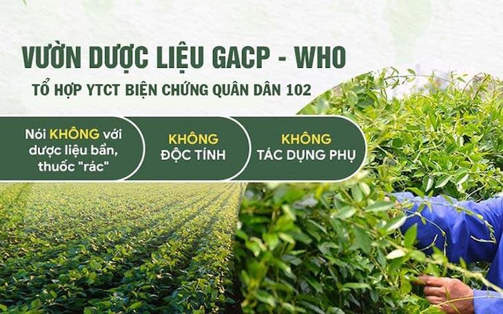 Quân dân 102 cam kết sử dụng 100% nguồn dược liệu sạch chuẩn GACP - WHO
