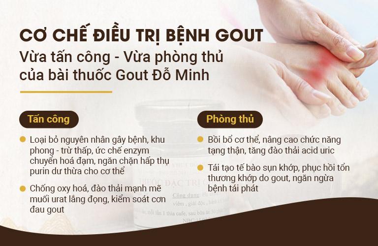 Cơ chế điều trị bài thuốc Gout Đỗ Minh Đường
