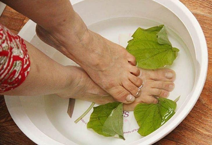 Ngâm da hoặc tắm bằng lá lốt giúp cải thiện tình trạng kích ứng, sưng ngứa do vảy nến