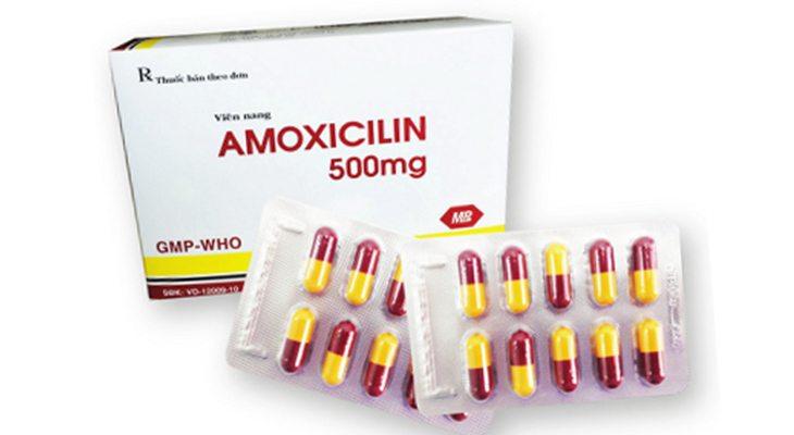 Kháng sinh Amoxicillin được ưu tiên sử dụng trong phác đồ thuốc điều trị vi khuẩn Hp