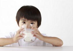 sữa tăng cân cho bé 1 tuổi