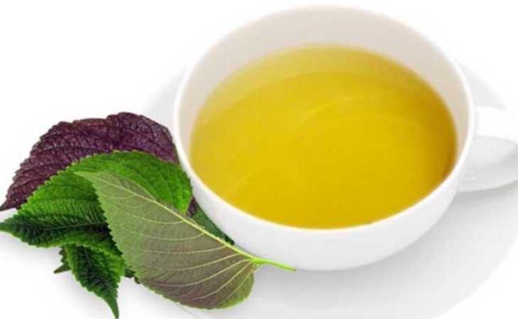 Tía tô là bài thuốc dân gian trị viêm hang vị dạ dày phổ biến