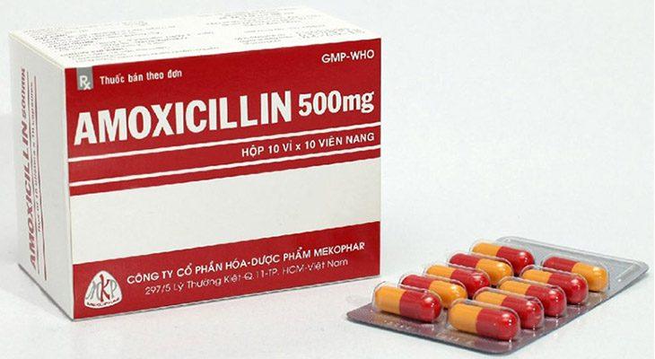 Amoxicillin là kháng sinh đặc hiệu được chỉ định dùng để ức chế hoạt động của vi khuẩn Hp