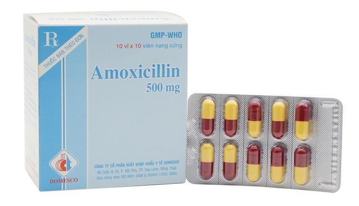 Viêm hang vị dạ dày nên uống thuốc gì? Thuốc Amoxicillin