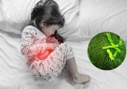 Xét nghiệm vi khuẩn hp cho bé khi nào? Hình thức thực hiện