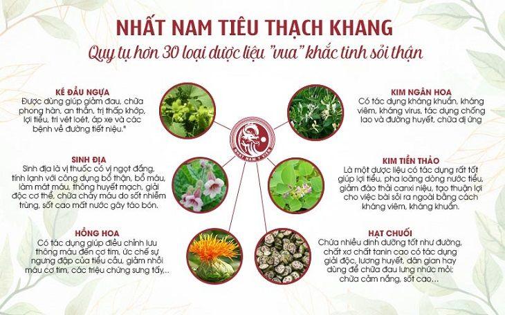 Thành phần dược liệu xuất hiện trong bài thuốc Nhất Nam Tiêu Thạch Khang