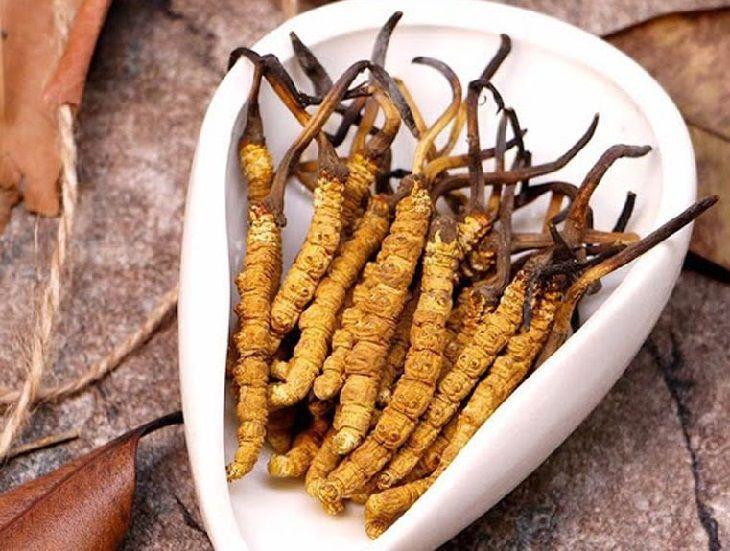 Đông trùng hạ thảo là loại dược liệu tự nhiên chứa nhiều dinh dưỡng