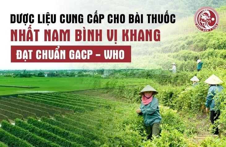 Dược liệu trong bài thuốc 100% lấy từ vườn dược liệu đạt chuẩn GACP - WHO